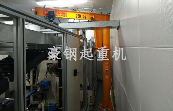 广汽集团向豪钢起重机定制250kg旋臂起重机安装调试完成