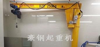 法雷奥西门子新能源汽车向豪钢定制250kg悬臂起重机